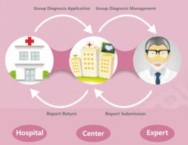 Remote expert consultation platform K-Diag